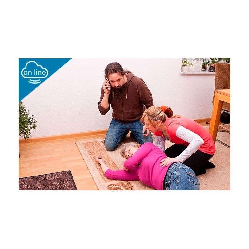 Mejora de las Capacidades Físicas y Primeros Auxilios para las Personas Dependientes en el Domicilio - Online