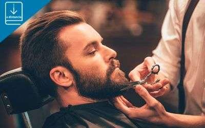 UF0535- Cuidados de barba y bigote - a distancia