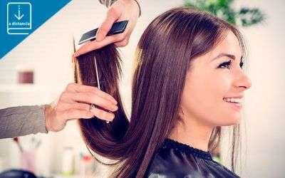 UF0532 - Cambios de forma temporal en el cabello - a distancia