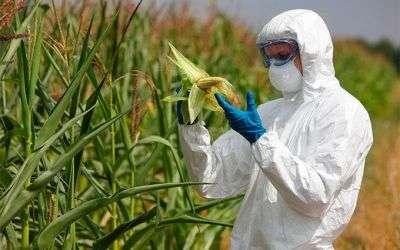 Prevención de Riesgos Laborales - PRL Sector Agricultura
