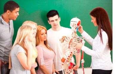 Anatomía humana - a distancia