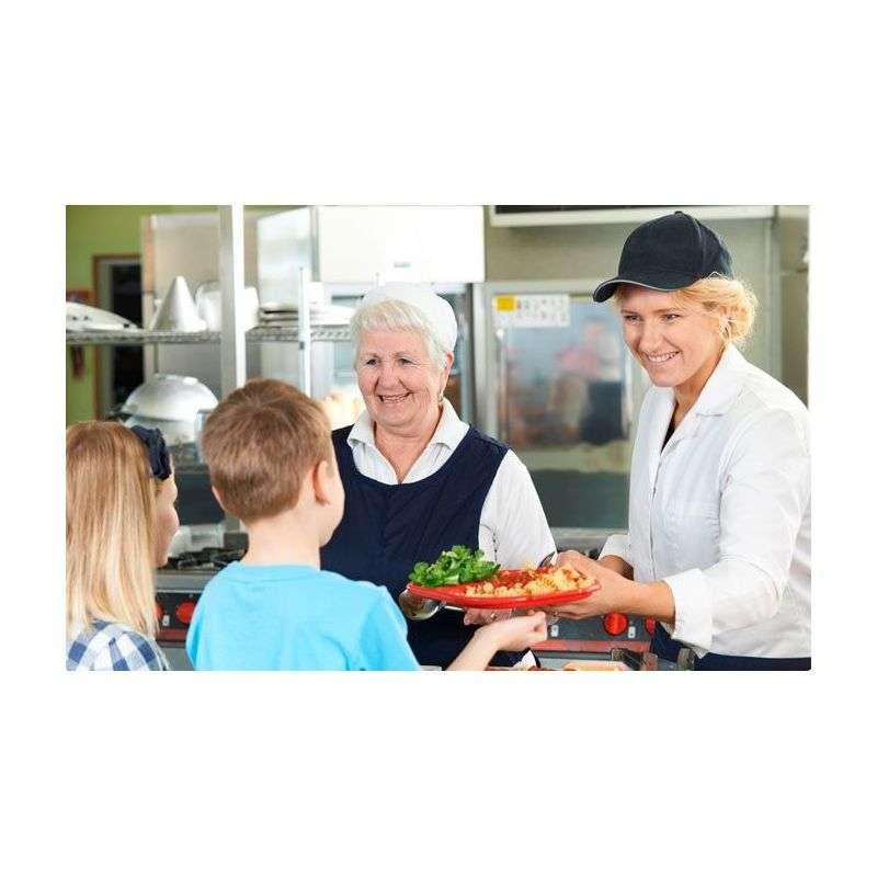 trabajo de monitor de comedor escolar casa dise o