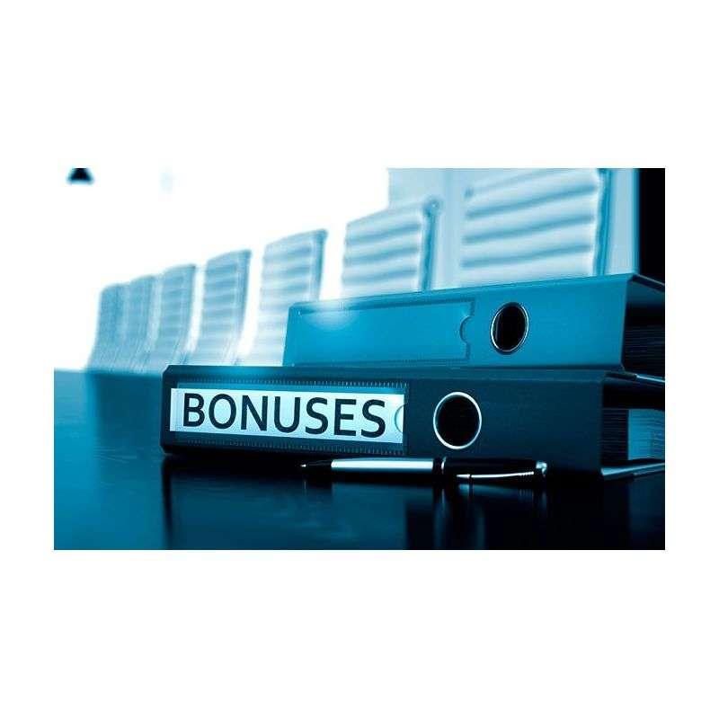 El Bonus por Objetivos