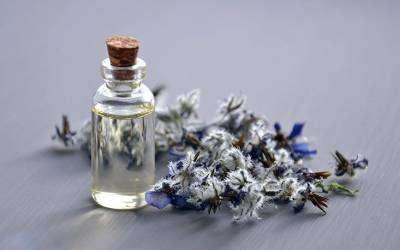 Curso Online de Homeopatía y fitoterapia