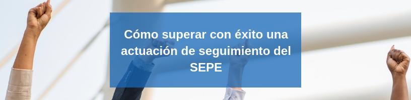 Seguimiento del SEPE