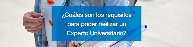 requisito experto universitario