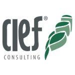 logo-cief-consulting