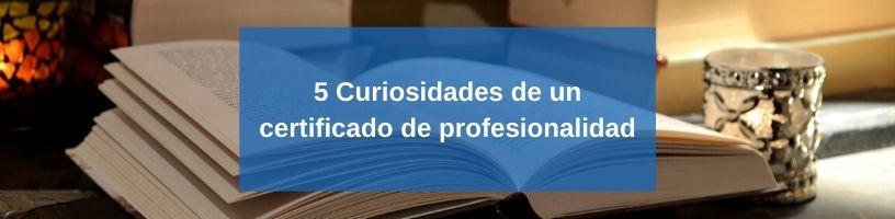 5 Curiosidades de un certificado de profesionalidad